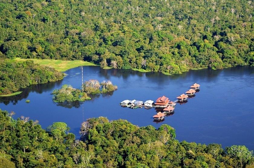 uacari amazonas